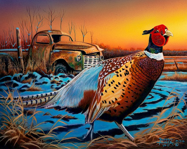 back-40-pheasant-featured-image